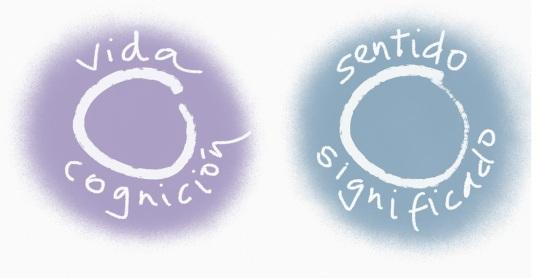 significado sentido